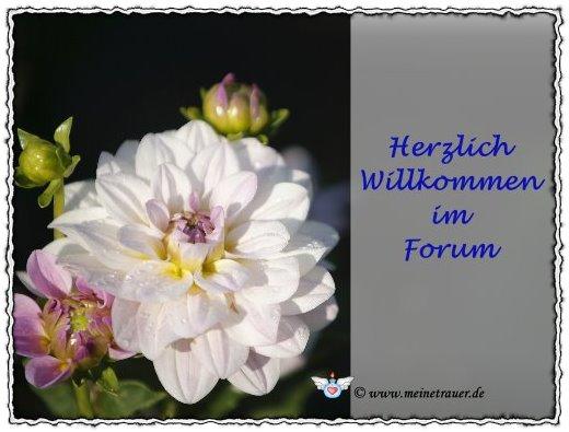 5142-trauerforum-willkommen-014