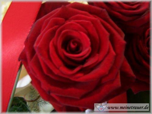 Trauer-Blumen_0111