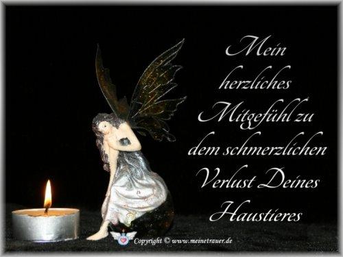 trauerkarte-haustier_002