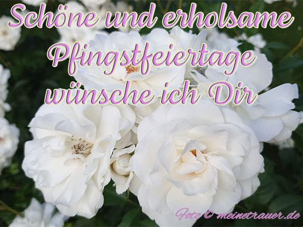 pfingsten_karten_1001_600x450