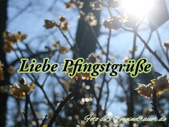 pfingsten_karten_1003_600x450