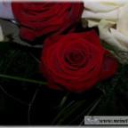 Trauer-Blumen_0110
