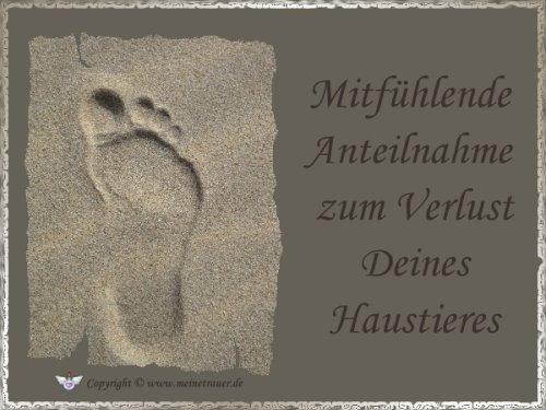 trauerkarte-haustier_008