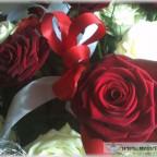 Trauer-Blumen_0144
