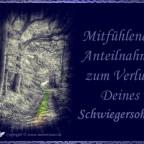 trauerkarte-schwiegersohn_005