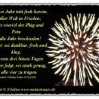neuesjahr0005