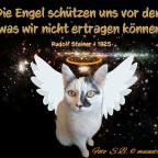 engel-schutzengel-karten_1009_600x450