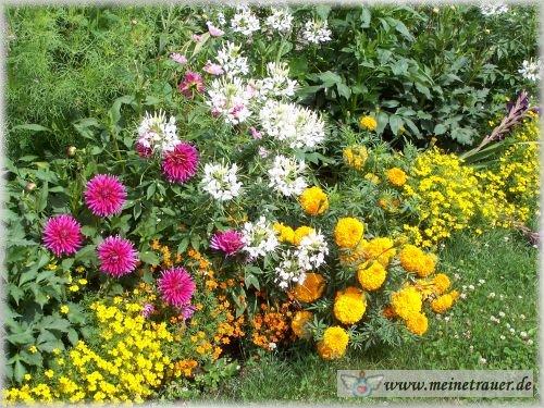 Trauer-Blumen_0094