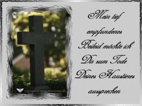 trauerkarte-haustier_004