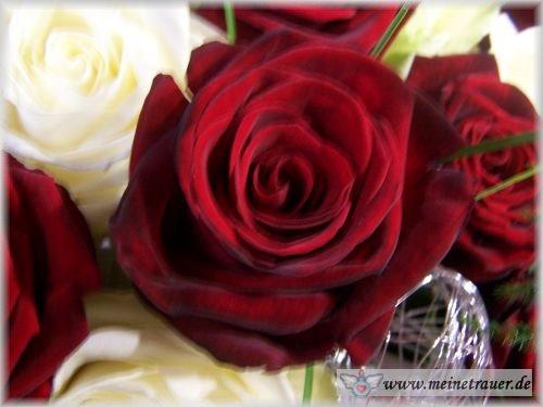 Trauer-Blumen_0112