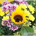 Trauer-Blumen_0007