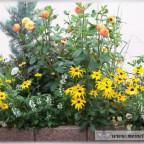 Trauer-Blumen_0055