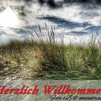 willkommen-karte_1002600x450