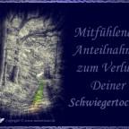 trauerkarte-schwiegertochter_005