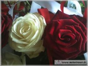 Trauer-Blumen_0145
