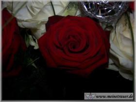 Trauer-Blumen_0106