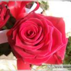 Trauer-Blumen_0124